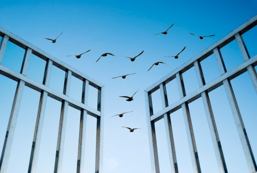 seller-financing-open-gate.jpg